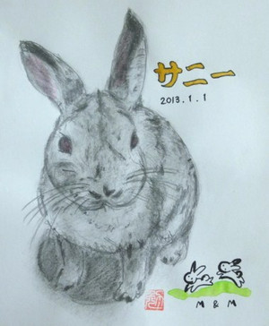 ウサギを描く_c0340785_15292095.jpg