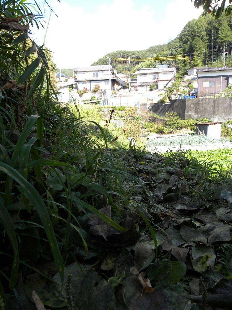 鎌倉街道(湖北道)②_b0329588_09192022.jpg