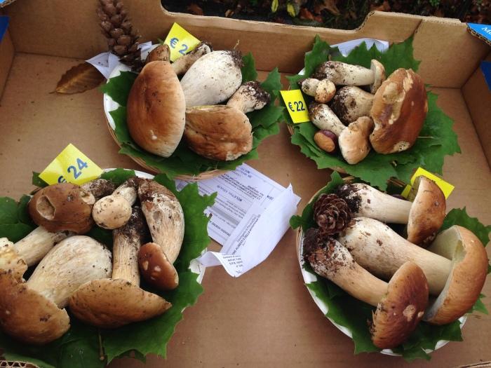 """イタリアの秋の恵み🍁 \""""ジャヴェーノのポルチーニ茸祭り\"""" Festa del Fungo a Giaveno_b0246303_22383603.jpg"""