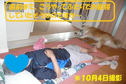 f0121712_12324254.jpg