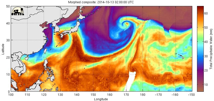 台風19号上陸:私の誕生日を台風でお祝い!?サンクスNWO!_e0171614_1552428.jpg