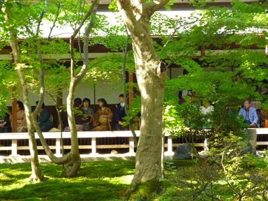 10月12日 「市民茶会」 清水園 と 喫茶室ひびや より_e0135219_12131545.jpg
