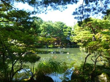 10月12日 「市民茶会」 清水園 と 喫茶室ひびや より_e0135219_127173.jpg