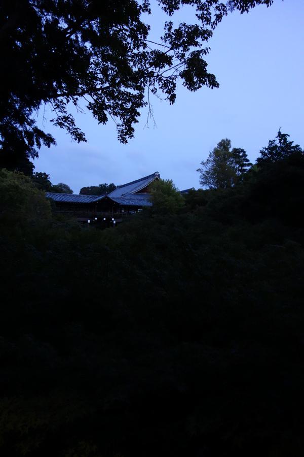 松ヶ崎と東福寺_e0317421_18484816.jpg