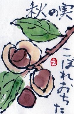 山茶花の実が . . ._a0220570_10332672.jpg
