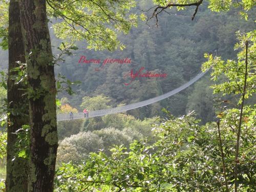 イタリアにこんな橋があった!!イタリア人もビビりまくる吊り橋_c0179785_15572911.jpg