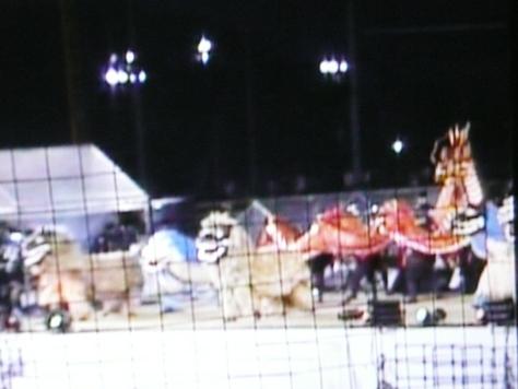 2014年10月21 第5回2011年ウチナンチュウー世界大会閉会式 その6_d0249595_12271674.jpg