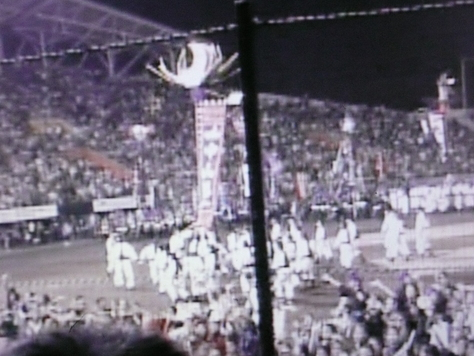 2014年10月22 第5回2011年ウチナンチュウー世界大会閉会式 その7_d0249595_12525979.jpg