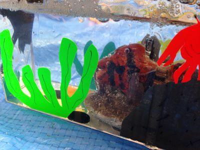 夏休み工作[色鉛筆立て・スライム水族館]〜宇治教室〜_f0215199_10323318.jpg