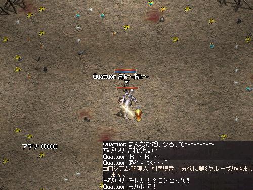 b0056117_320412.jpg