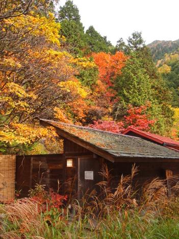 中房温泉の紅葉最高です。_f0219043_09470895.jpg