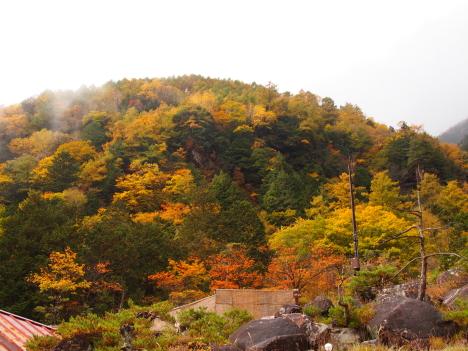 中房温泉の紅葉最高です。_f0219043_09501637.jpg