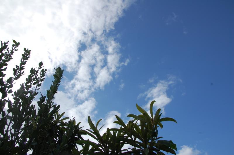 台風一過:なんもなし     by     (TATE-misaki)_c0108460_16345223.jpg