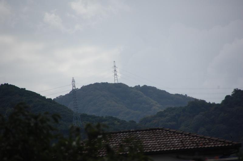 台風一過:なんもなし     by     (TATE-misaki)_c0108460_16345384.jpg