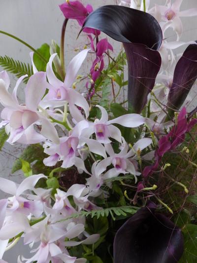 オークリーフ(㐂八さん開店の花)_f0049672_13453728.jpg