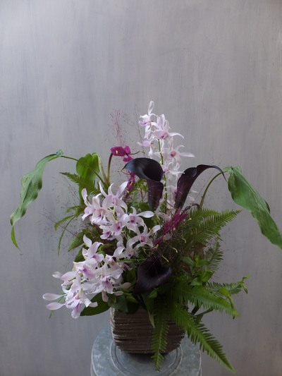 オークリーフ(㐂八さん開店の花)_f0049672_1345762.jpg