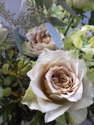 オークリーフ(㐂八さん開店の花)_f0049672_13471280.jpg