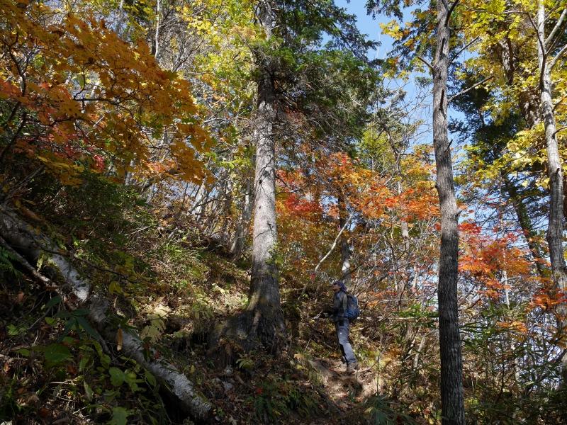 恵庭岳、10月12日-その1-_f0138096_14452250.jpg