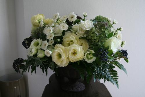 白いお祝いの花_a0257432_923329.jpg