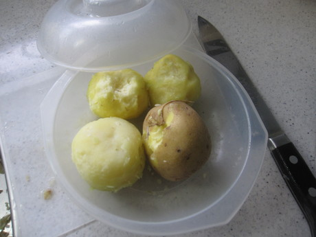 始まった冬囲いとKちゃんに芋餅を作った_a0279743_12114440.jpg