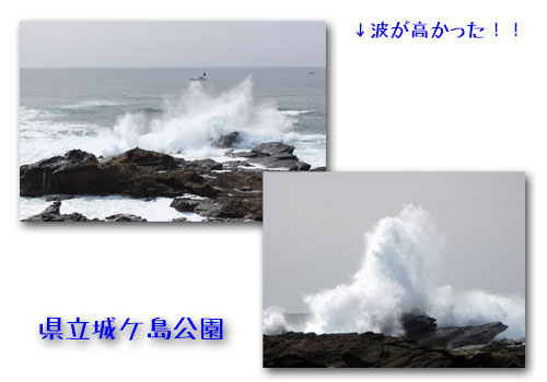 b0024183_20375959.jpg