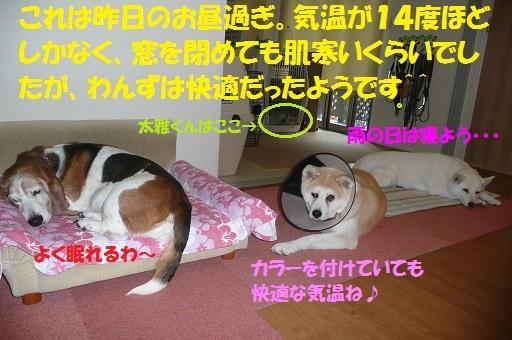 f0121712_14125340.jpg