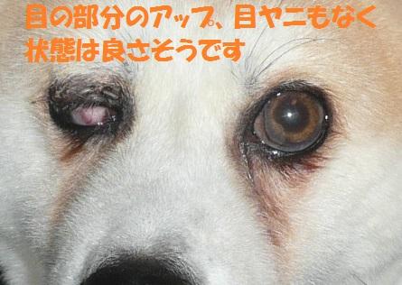 f0121712_14223335.jpg