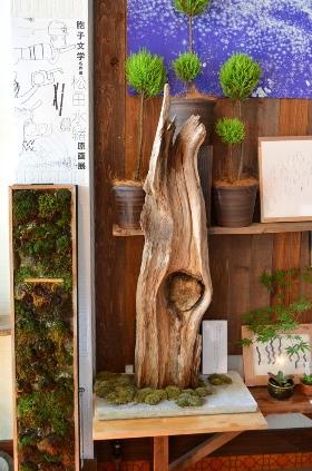 苔の箱庭ワークショップのご案内_d0263815_17144594.jpg