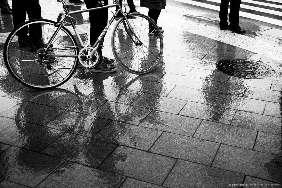 雨 音_e0117517_151272.jpg