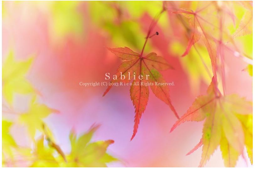 美しい秋にうっとり!ピックアップブロガー「S a b l i e r」のRicoさんの秋のフォトギャラリー!_f0357923_1704853.jpg