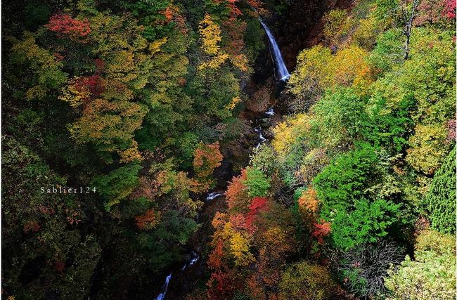 美しい秋にうっとり!ピックアップブロガー「S a b l i e r」のRicoさんの秋のフォトギャラリー!_f0357923_1711374.jpg