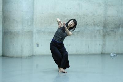 「ダンスブリッジ・インターナショナル」間もなく開幕!_d0178431_13533612.jpg