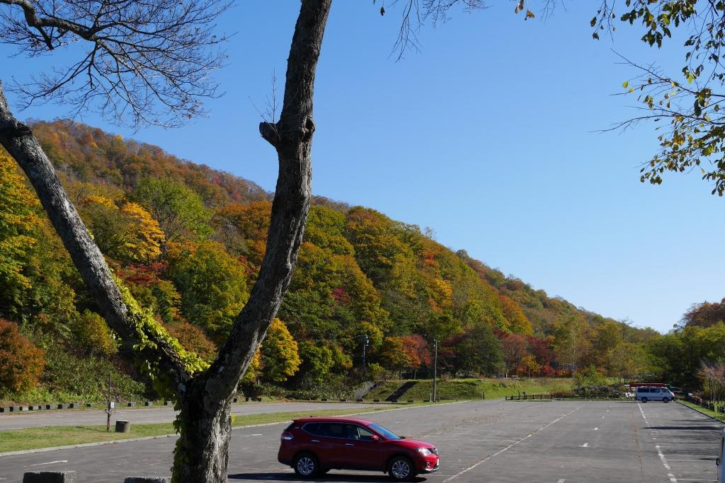 支笏湖周辺の紅葉、10月15日_f0138096_16325989.jpg