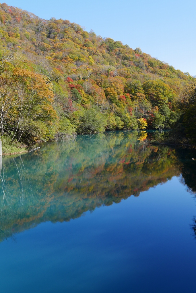 支笏湖周辺の紅葉、10月15日_f0138096_16333739.jpg