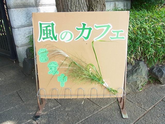 ~風のカフェ~_b0049307_11234890.jpg