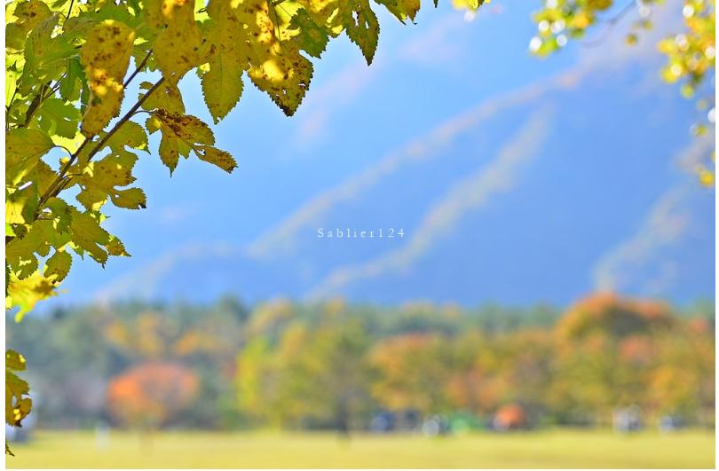 美しい秋にうっとり!ピックアップブロガー「S a b l i e r」のRicoさんの秋のフォトギャラリー!_f0357923_17561161.jpg