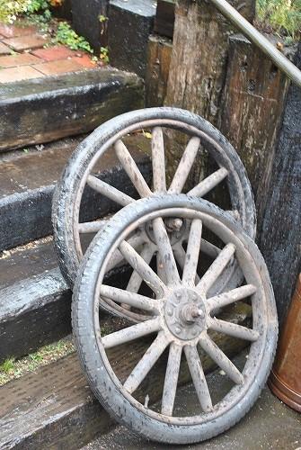 *庭に有るタイヤ・・・*_e0159050_16512569.jpg