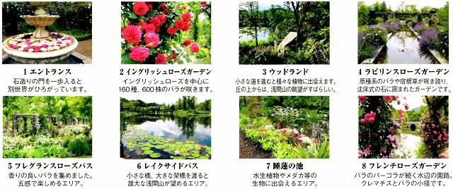 10/9 軽井沢レイクガーデン ③_c0124100_025740.jpg
