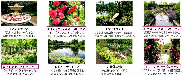 10/9 軽井沢レイクガーデン ④_c0124100_1514562.jpg