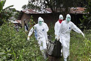 エボラ偽旗作戦の目的が判明!米軍事介入と資源搾取_e0069900_15503396.jpg