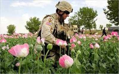 マララにノーベル平和賞?タリバンに仕組んだCIAアヘン戦争_e0069900_18142612.jpg
