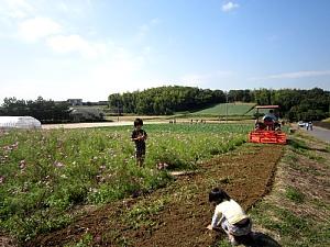 本日サツマイモ収穫体験_d0120421_1223453.jpg