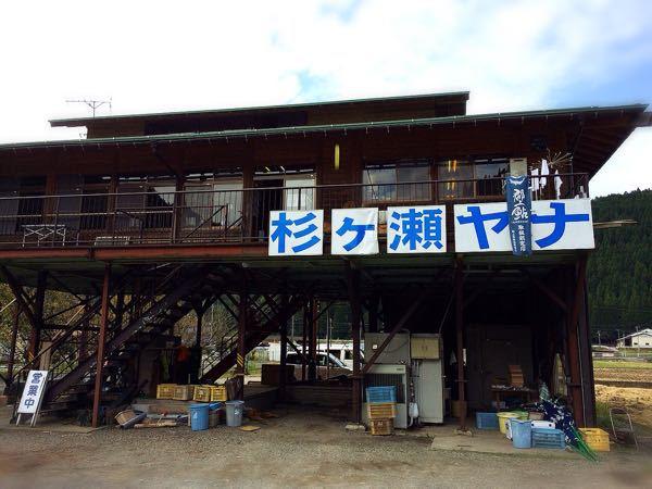 杉ヶ瀬ヤナ_e0292546_11264920.jpg
