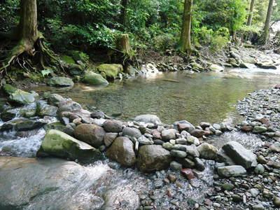 リューバ―ダムが・・・。山奥の川はこの時期干上がっています!_a0254656_1740263.jpg