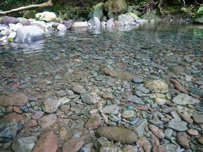 リューバ―ダムが・・・。山奥の川はこの時期干上がっています!_a0254656_17524225.jpg
