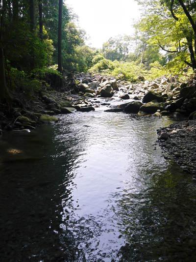リューバ―ダムが・・・。山奥の川はこの時期干上がっています!_a0254656_18151710.jpg