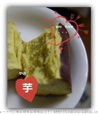 b0112758_035160.jpg