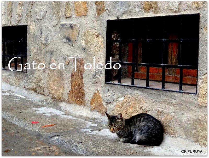スペイン旅行記 9 トレド その3 街歩き_a0092659_18184769.jpg