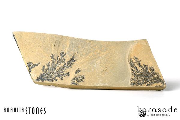 デンドライト原石(アメリカ・ユタ州産)_d0303974_14592687.jpg