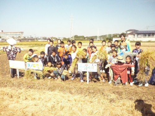 稲刈り無事終了_c0329378_17275743.jpg